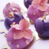 Муссовые десерты и декор (7)