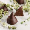 Шоколадные Конфеты, Мороженое и Сладости (3)