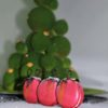 new year macarons (3)
