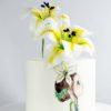 суперпокрытие для торта (2)