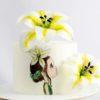 суперпокрытие для торта (4)